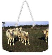 White Cows Weekender Tote Bag