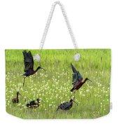 White-faced Ibis Rising, No. 1 Weekender Tote Bag