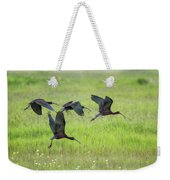 White-faced Ibis Rising, No. 2 Weekender Tote Bag