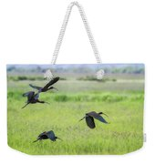 White-faced Ibis Rising, No. 3 Weekender Tote Bag