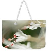 White Bottlebrush Buckeye Weekender Tote Bag