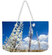 White Flowering Sea Squill On A Blue Sky Weekender Tote Bag