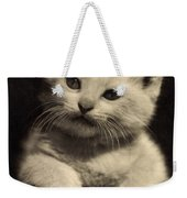 White Fluffy Kitten Weekender Tote Bag