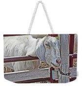 White/grey Goat Head Through Fence 2 6242018 Goat 2420.jpg Weekender Tote Bag