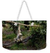 White Handed Gibbon 1 Weekender Tote Bag