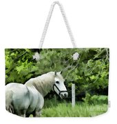 White Horse In A Green Pasture Weekender Tote Bag