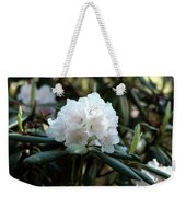 White Inflorence Of  Rhododendron Plant Weekender Tote Bag
