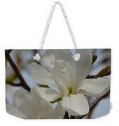 White Magnolia Blooming In Spring Weekender Tote Bag