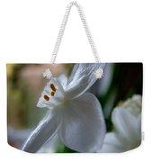 White Narcissi Spring Flower 4 Weekender Tote Bag
