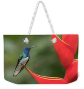 White-necked Jacobin Weekender Tote Bag