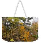 White Pine Hollow State Forest Weekender Tote Bag