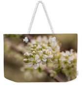 White Plum Blossom Weekender Tote Bag