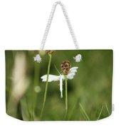 White Plume Moth, Weekender Tote Bag
