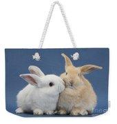 White Rabbit And Sandy Rabbit Weekender Tote Bag