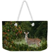 White-tail Buck Through The Trees Weekender Tote Bag