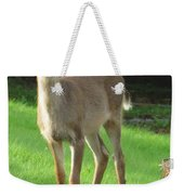 White-tail Fawn Weekender Tote Bag