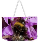 White-tailed Bumblebee On Southern Marsh Orchid Weekender Tote Bag