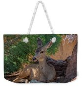 White-tailed Deer H1829 Weekender Tote Bag