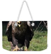 White Tailed Eagle Screaming Nature Wildlife Scene Weekender Tote Bag