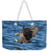 White-tailed Eagle Taking Fish Weekender Tote Bag