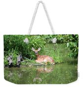 White Tailed Fawn Wildlife Weekender Tote Bag