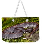 White-tailed Hognose Viper Weekender Tote Bag