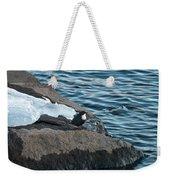 White-throated Dipper Nr 4 Weekender Tote Bag