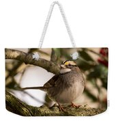 White Throated Sparrow On Branch New Jersey Weekender Tote Bag