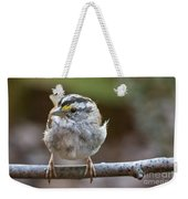 White Throated Sparrow Portrait Weekender Tote Bag