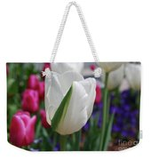 White Tulip With A Green Stripe In A Garden Weekender Tote Bag
