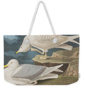 White-winged Silvery Gull Weekender Tote Bag