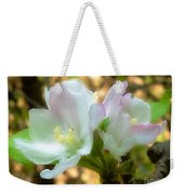 Who Here Has Seen Apple Blossoms In Late Summer Weekender Tote Bag
