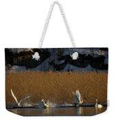 Whooper Swan Nr 12  Weekender Tote Bag