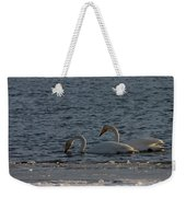 Whooper Swan Nr 2 Weekender Tote Bag