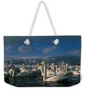 Whooper Swans In Winter Weekender Tote Bag