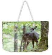 Who's Looking At Who Weekender Tote Bag