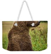 Who's There Weekender Tote Bag