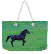Wild And On The Go Weekender Tote Bag