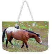 Wild Appaloosa Stallion Weekender Tote Bag
