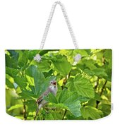 Wild Bird In A Currant Bush. Weekender Tote Bag