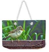 Wild Bird In A Natural Habitat.  Weekender Tote Bag