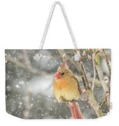 Wild Birds Of Winter - Female Cardinal In The Snow Weekender Tote Bag