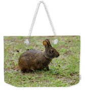 Wild Bunny Eating Grass Weekender Tote Bag