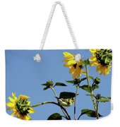 Wild Canary Sunflowers Weekender Tote Bag