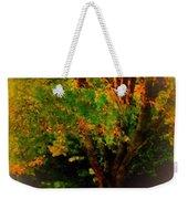 Wild Cherry Tree In Summer Sun Weekender Tote Bag