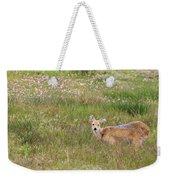 Wild Chinese Water Deer  Weekender Tote Bag