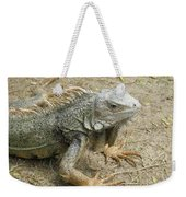 Wild Colorful Iguanas In The Outdoors With Spines On His Back Weekender Tote Bag