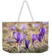 Wild Crocus Balkan Endemic Weekender Tote Bag