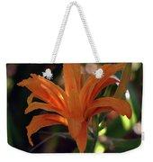 Wild Daylilies 1167 H_2 Weekender Tote Bag