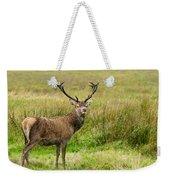 Wild Deer Animals   Weekender Tote Bag